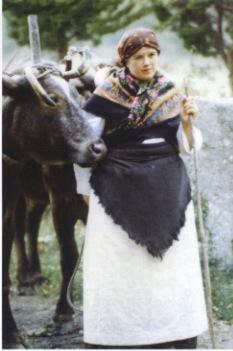 CiclodoAno - A Seitura